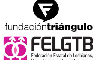 logotipo entidades felgtb y triangulo